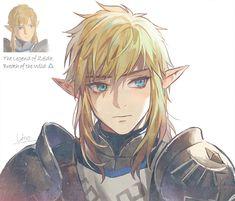 The Legend Of Zelda, Legend Of Zelda Breath, Manga, Botw Zelda, Link Art, Nintendo Characters, Link Zelda, Fanarts Anime, Twilight Princess