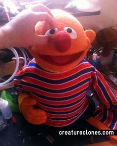 Ernie244