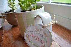 Last minute Mother's Day gift: A plant in a coffee mug from Lauren Rae & Co. Free printable from I Heart Naptime