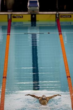 The Guide to Mastering the Process of Becoming an Elite Swimmer