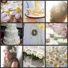 daisy.jpg (1024×1024)