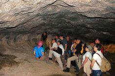 Vicente Baldellou explicando los paneles de la Fuente del Trucho. Arte Paleolítico.  Curso 2007
