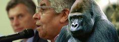 """Breves historias """"gorilas"""" Macri y Moyano, se reunieron Hugo afirmó: """"a los trabajadores les ha dado más respuesta el Gobierno de la Ciudad, que el Gobierno Nacional"""" http://www.elclubdelasnoticias.blogspot.com.ar/2014/01/tras-el-encuentro-que-mantuvieron-y.html"""