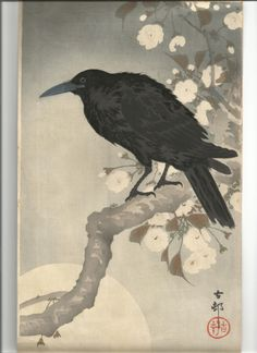 Ohara Shoson (Koson, Hoson) Corbeau (Raven, Crow )185 x 345 mm.coll perso malley
