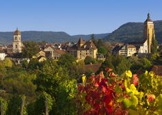 Jura Wines - a highlight of the Franche-Comte area where the barge, Hirondelle, cruises between Burgundy and Besancon.
