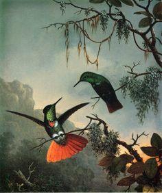 "Martin Johnson Heade - ""Two Hummingbirds""  1864"