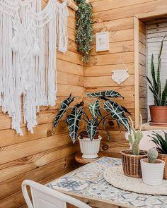 DIY: Portavelas de cemento personalizables - Alquimia Deco Concrete, Diy, Wreaths, Studio, Christmas, Inspiration, Home Decor, Bikinis, Rustic Style