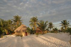 Beach cabana, Tulum, Mexico   For about a tenner a night you…   Flickr