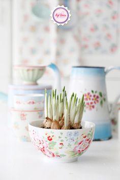 Syl loves : Cath Kidston bowl