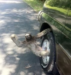 hangin out the passenger side of his best friend's ride trying to holla at me