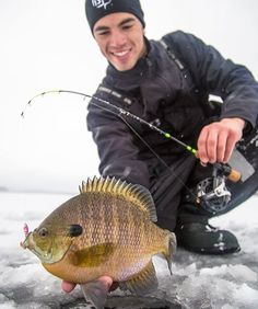 Get all the buzz on angling and fishing in the Midwest. Get tips and tricks about your favorite species and where to find it. Usa Fishing, Gone Fishing, Fishing Tips, Fishing Stuff, Cool Fish, Big Fish, Fish Chart, Open Water, Hard Water