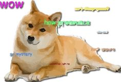 7 ways #dogecoin #doge has been used for #charitable and #philanthropy