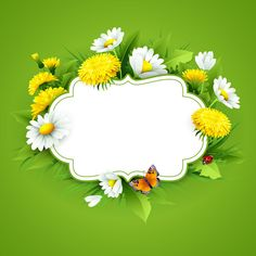 Blank label with spring flower and green background vector 01 Framed Wallpaper, Flower Background Wallpaper, Flower Backgrounds, Vector Background, Wallpaper Backgrounds, Beautiful Art Pictures, Victorian Tea Party, Background For Photography, Photography Backgrounds