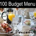 $100 Weekly Grocery Budget Menus + Recipes + Shopping Lists! Love this site! (For a family of SIX with three teenagers)