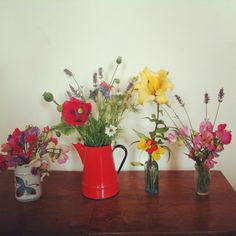 My allotment flowers.
