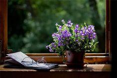 весна-лето окно (604x404, 52Kb)