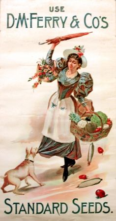 Original Vintage Posters -> Advertising Posters -> D. Ferry & Co.'s Standard Seeds - AntikBar Vintage Labels, Vintage Ephemera, Vintage Postcards, Vintage Ads, Vintage Seed Packets, Vintage Gardening, Antique Pictures, Seed Catalogs, Vintage Artwork