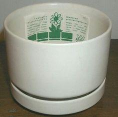 Plant Pots, Potted Plants, Garden Pots, Planters, Pot Plants, Pot Plants, Garden Planters, Flower Pots, Plant