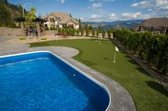 How about a swim and some putting practice?  #synlawn