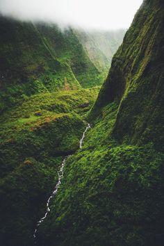 Ponderation — expressions-of-nature:   byroelruijs Kauai,...