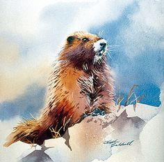 Marmot drawing payzleighspirations 3 pinterest marmot the canadian encyclopedia sciox Choice Image