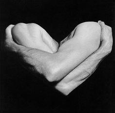 Vincent, 1981 Robert Mapplethorpe