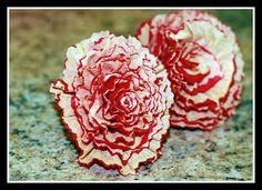 Superchick Studios: DIY ~ Crêpe Paper Flowers!