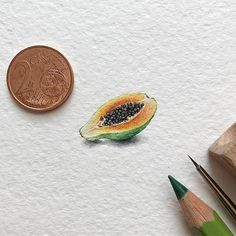 What do you think about this fruit? - #papaya #art #art_daily #art_worldly #arts_help #arts_gallery #artsfeatures #artscrowds #artistic_unity_ #aquarelle #artmaster #art_collective #blvart #drawing #dailyart #illustration #instaartexplorer #global_artworks #miniature #miniart #miniatureart #sharingart #supportartists #tinyart #tiny_worlds_living #top_watercolor #watercolor #waterblog #watercolorist #worldofartists