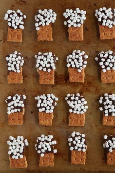 S'mores Mini Dippers. Graham Crackers dipped in chocolate, dipped in mini marshmallows. So fun for parties! Just Desserts, Delicious Desserts, Yummy Food, Dessert Recipes, Recipes Dinner, Dessert Healthy, Sweet Desserts, Dessert Bars, Cocoa Party