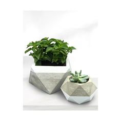 MYLO - Concrete Planter Minimal Collection | Black or White | Large Planter | HandcraftedGift | CactusSucculent | Concrete Creation | Minimalist | Rustique Large Planters, Planter Pots, Big House Plants, Boat Decor, Concrete Planters, Close To Home, Wall Decor, Wall Art, Big Houses