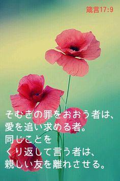 箴言 そむきの罪をおおう者は、愛を追い求める者。同じことをくり返して言う者は、親しい友を離れさせる。