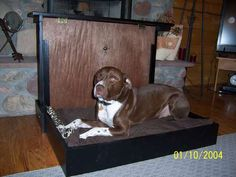 BRILLIANT DIY plans for Murphy Bed, dog crate for under 100$.  http://www.instructables.com/id/Doggy-Daybed-With-Hide-a-Kennel/#step1
