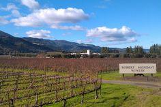 Mondavi Winery, CA