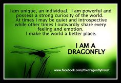 dragonfly+quote+I+am+a+dragonfly.jpg (690×476)