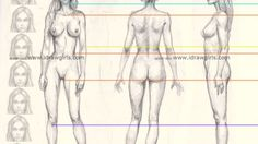 Pin by Aylén Ortiz on dibujos | Pinterest | Body proportions ...