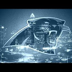 Carolina Panthers Carolina Panthers Football, Nfl Football, Panther Nation, Heels, Sports, Heel, Hs Sports, High Heel, Sport