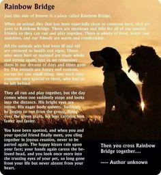 Rainbow Bridge poem