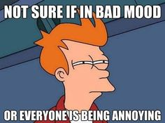 Bad Mood or Everyone Annoying - some days its both