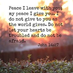 Peace I leave with you, My peace I give to you; not as the world gives do I give to you. Let not your heart be troubled, neither let it be afraid. (John 14:27)