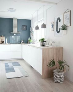 kitchen-cuisine-blanc-bleu-bois-hotte-intox-tapis-plante-suspension-beton-credence-verre-cadre - The world's most private search engine Kitchen Interior, New Kitchen, Kitchen Decor, Kitchen Ideas, Kitchen Planning, Kitchen Colors, Kitchen Inspiration, Küchen Design, House Design