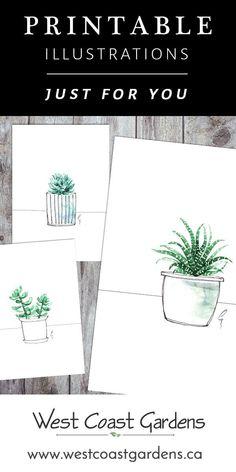 Succulent Illustration Printables for You! Succulent Wall Art, Cactus Wall Art, Cactus Print, Succulent Planters, Succulents Garden, Templates Printable Free, Printable Wall Art, Free Printables, Printable Designs