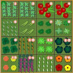 RUTA URBAN GARDEN: OGRÓD WARZYWNY NA MAŁEJ PRZESTRZENI - Eksperyment nr 1 - Kwadraty warzywne
