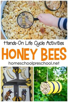 Bee Activities, Summer Activities For Kids, Lessons For Kids, Preschool Activities, Therapy Activities, Art Lessons, April Preschool, Kids Fun, Bees For Kids