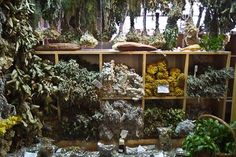 Herbs:  Dried #Herb and Tea Stand at the Funchal Market, Mercado dos Lavrado.