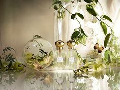 Songes, - Annick Goutal http://www.perfumebighouse.com/2013/11/songes-la-muguet-neroli-annick-goutal.html Photo by Candice Milon