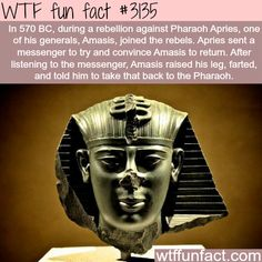 Amasis, the general who sent a a fart -  WTF fun facts
