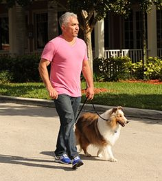 By Cesar Millan I think it's safe to assume that we all want what's best for our dogs, all the time. We make sure they're properly fed and have enough water. We take them to the vet regularly. We keep them clean and groomed.