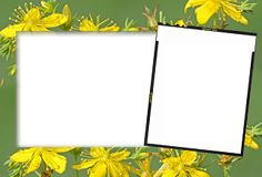 photoshop.png frames wallpapers designs: albums frames _engagement frames_love frames_marri...