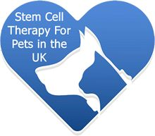 Treat Arthritis in Dogs & Cats using stem cell therapy. Our UK based service is affordable and convenient with an 85%+ success rate.