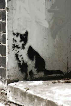 Banksy cat, London